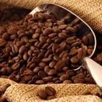 cafeINc