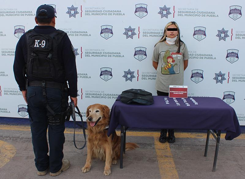 Unidad canina del Ayuntamiento de Puebla recibe certificación internacional