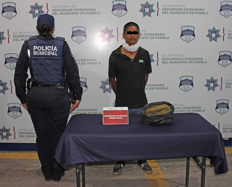 Asegura Policía Municipal de Puebla cerca de un kilogramo de probable marihuana; un hombre fue detenido